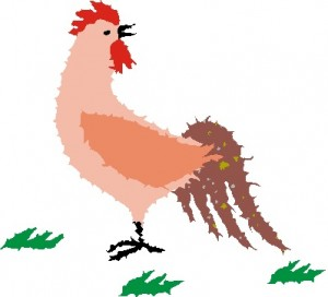 アンチエイジングには鶏肉